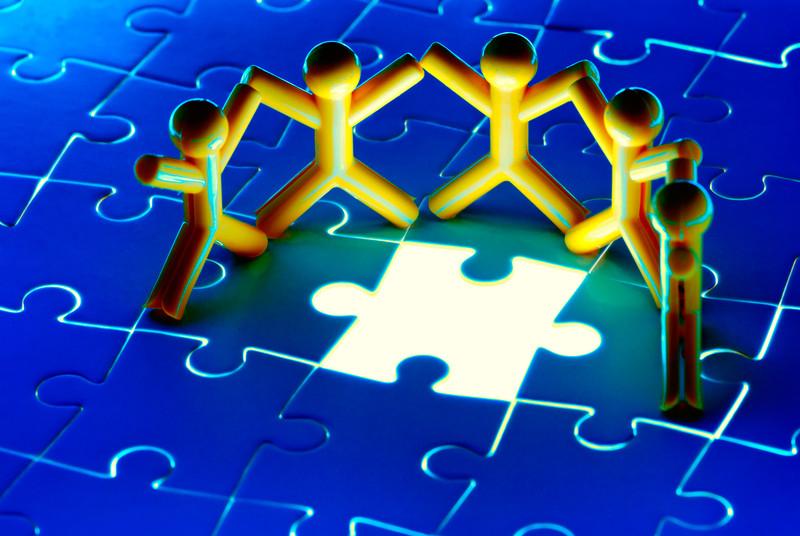 team fit