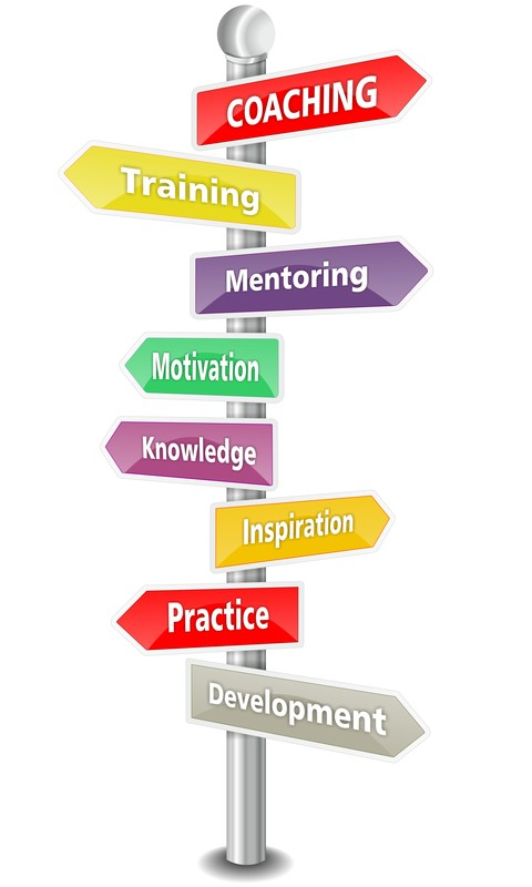 Coaching and Mentoring from McQuaig Psychometric System from Holst