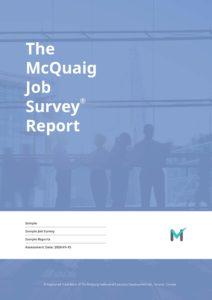Job Survey Sample Report